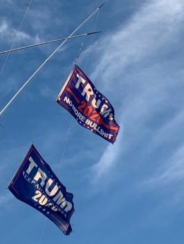 TRUMP 2020 ....die Südstaaten sind wohl in Republikaner Hand